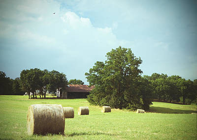 Summertime  Hay Bales  Poster by Ann Powell