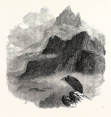 Summit Of The Pic Du Midi Dosseau Pyrenees 1854 Poster by English School