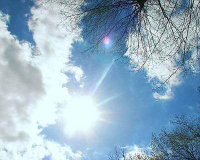 Poster featuring the photograph Sun Burst by Pamela Hyde Wilson