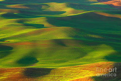 Sun Painted Hills Poster by Beve Brown-Clark Photography