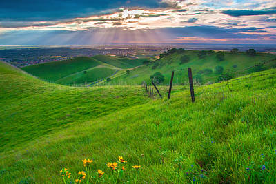 Sun Rays And Green Hillside Poster by Marc Crumpler