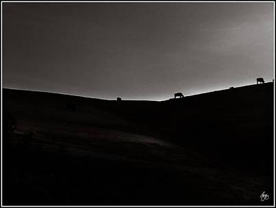 Sundown Monochrome Poster by Wayne King