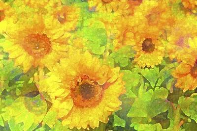Sunflower 19 Poster