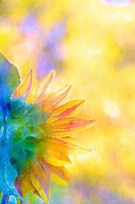 Sunflower 22 Poster