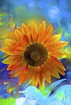 Sunflower 24 Poster