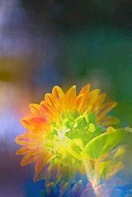 Sunflower 27 Poster