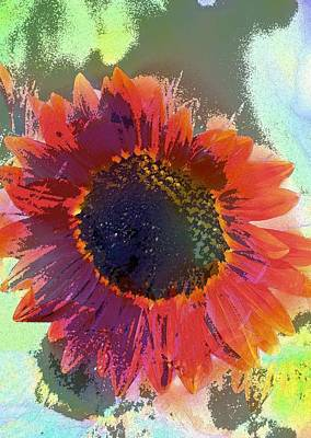 Sunflower 28 Poster
