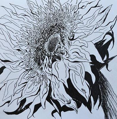 Sunflower Poster by Beverley Harper Tinsley