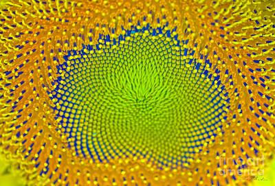 Sunflower Center Poster by Iris Richardson