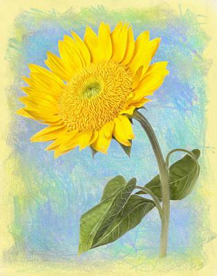 Sunflower Fantasy Poster by Robert Jensen