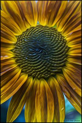 Sunflower In Rain Poster