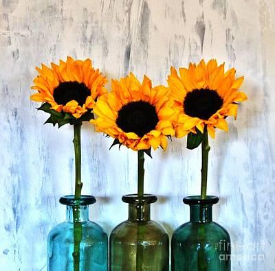Sunflower Trio Poster by Marsha Heiken