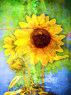 Poster featuring the photograph Sunflower With Bee Number Fourteen by Bob Coates