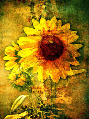 Poster featuring the photograph Sunflower With Bee Number Ten  by Bob Coates