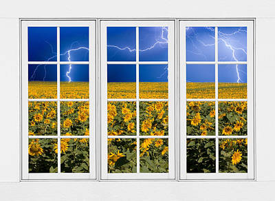Sunflowers And Lightning 24 Pane Window View Poster