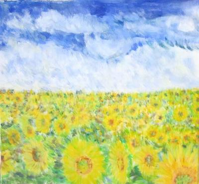 Sunflowers In A Field In  Texas Poster