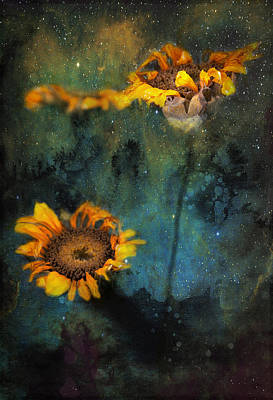 Sunflowers In Night Sky Poster by James Bethanis
