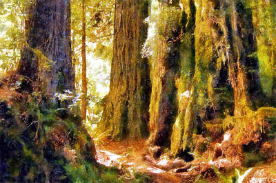 Sunlit Damnation Creek Trail Poster by Kaylee Mason