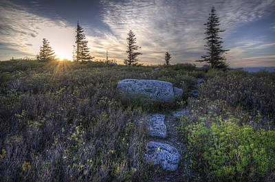 Sunrise At Bear Rocks Poster by Michael Donahue