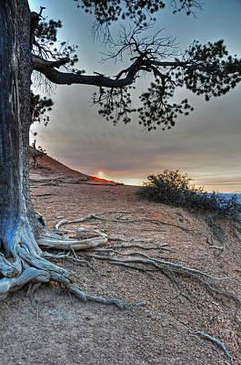 Sunrise At Bryce Canyon Poster by Darlene Bushue
