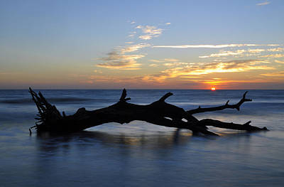 Sunrise At Driftwood Beach 7.2 Poster