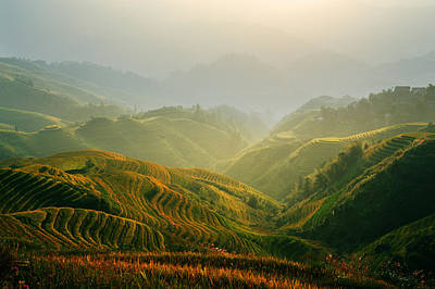Sunrise At Terrace In Guangxi China 3 Poster