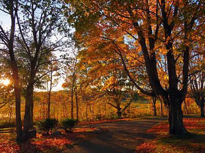 Sunrise Autumn Poster