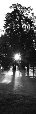 Sunrise, Fog, Woodford Co, Kentucky, Usa Poster by Panoramic Images