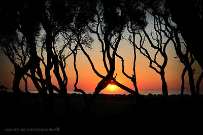 Sunrise Fort Fisher Poster by Phil Mancuso