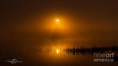 Sunrise In The Fog Poster