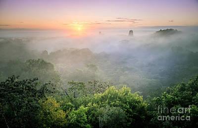 Sunrise In Tikal Poster