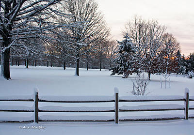 Poster featuring the photograph Sunrise On A Snowy Morning by Ann Murphy