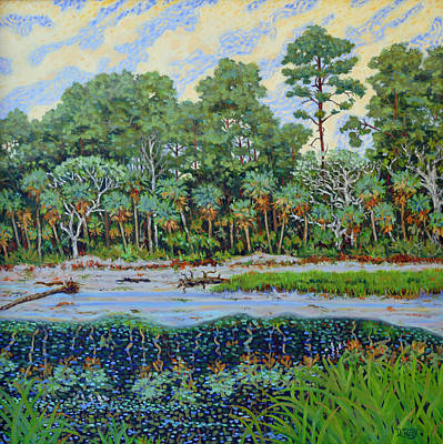 Poster featuring the painting Sunrise On Hunting Island Lagoon by Dwain Ray