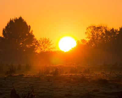 Sunrise Over Field Poster