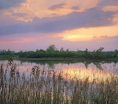 Sunrise Over Hillman Marsh Ontario Poster