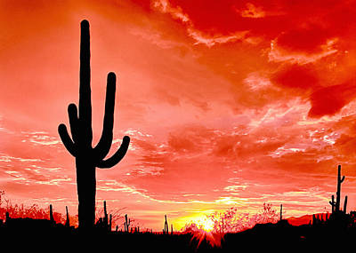 Sunrise Saguaro National Park Poster