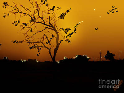 Sunset And Tree Poster by Artist Nandika  Dutt