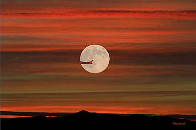 Sunset Flight With Full Moon Poster by Donna Kennedy