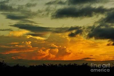 Sunset Glow Poster by Lynda Dawson-Youngclaus