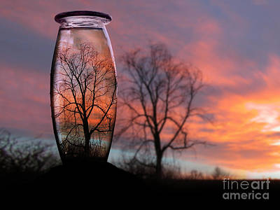Sunset In A Bottle Poster