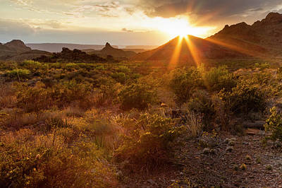 Sunset In Big Bend National Park Poster by Larry Ditto