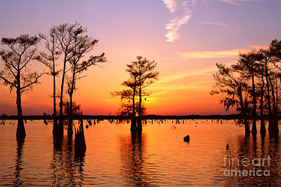 Sunset Lake In Louisiana Poster