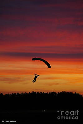 Poster featuring the photograph Sunset Landing by Tannis  Baldwin
