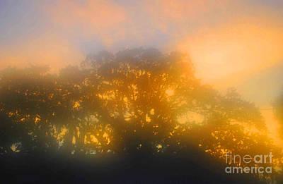 Sunset Mocks Sunrise Poster