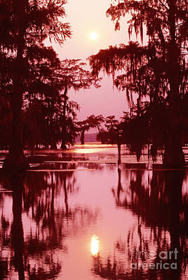 Poster featuring the photograph Sunset On The Bayou Atchafalaya Basin Louisiana by Dave Welling