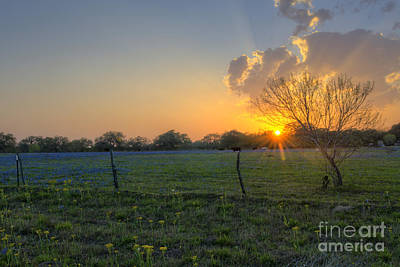 Sunset Over Poteet Texas Poster