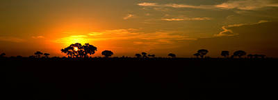 Sunset Over The Savannah Plains, Kruger Poster by Panoramic Images