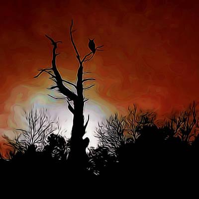 Sunset Owl Digital Art Poster by Ernie Echols