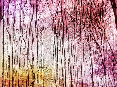 Sunset Snow Twigs Poster by Kathi Mirto