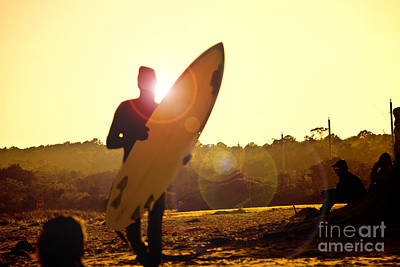Sunset Surfer Poster by Tom Gari Gallery-Three-Photography